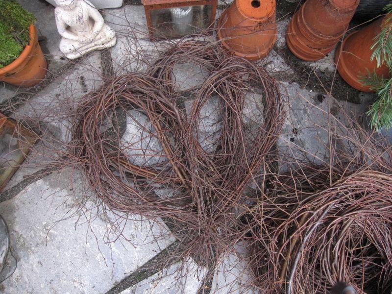 Vilmo 3_november_2008 028