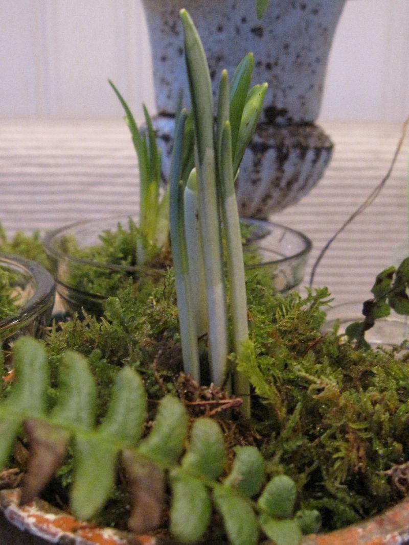 22. -23. februar Vilmo 2009 286